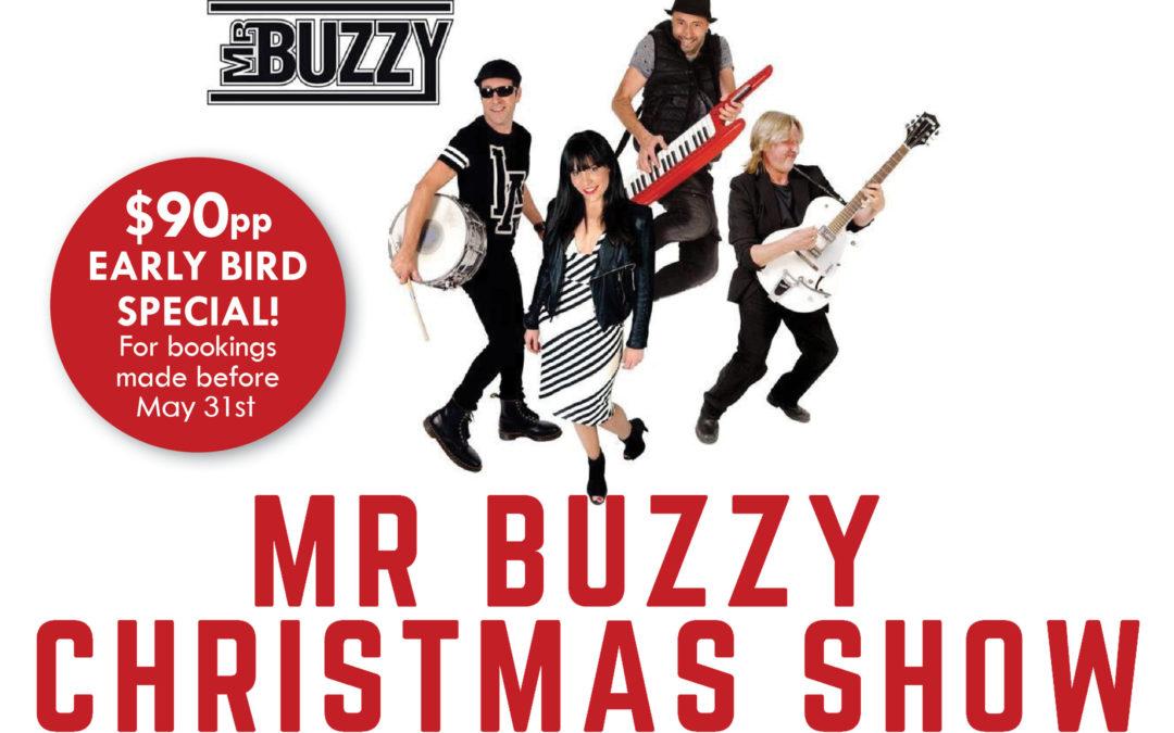 Mr Buzzy Christmas Show 2020
